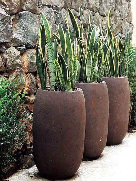 Use os vasos grandes para jardim