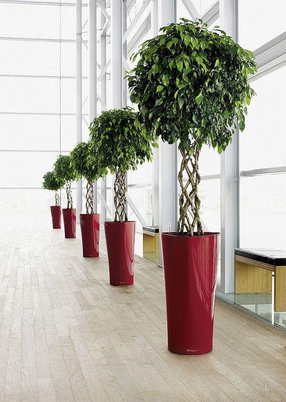 Vaso grande vermelho decorando o espaço