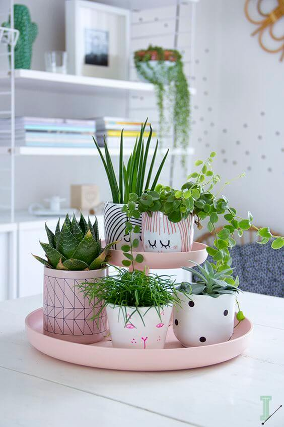 Capriche na escolha dos vasos para plantas pequenas
