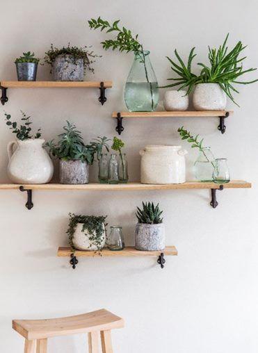 Vasos de plantas pequenas na prateleira de casa