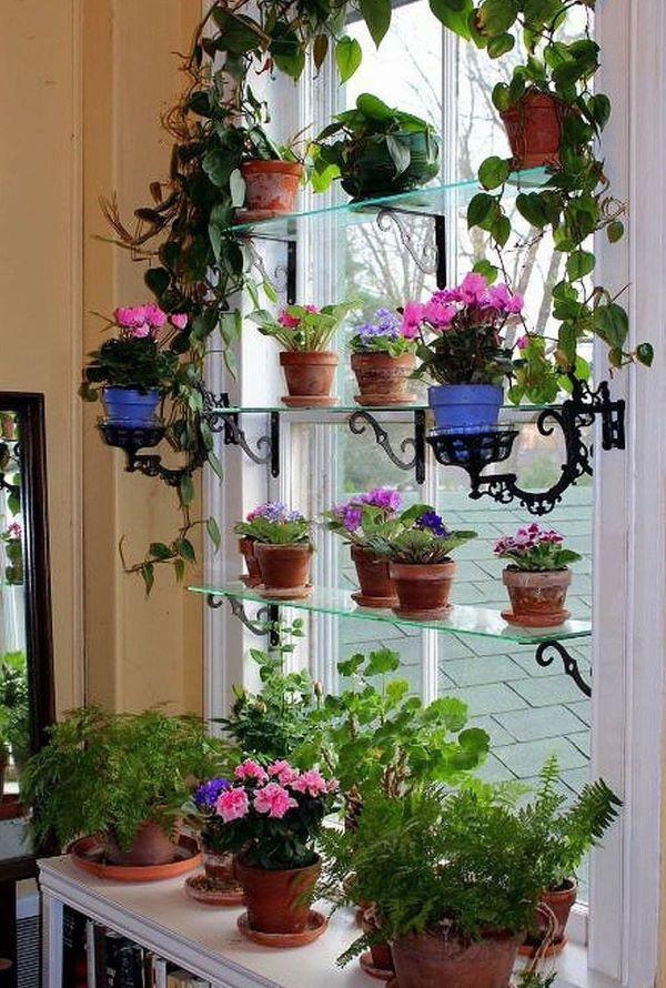 Vaso de plantas pequenas com violetas na janela