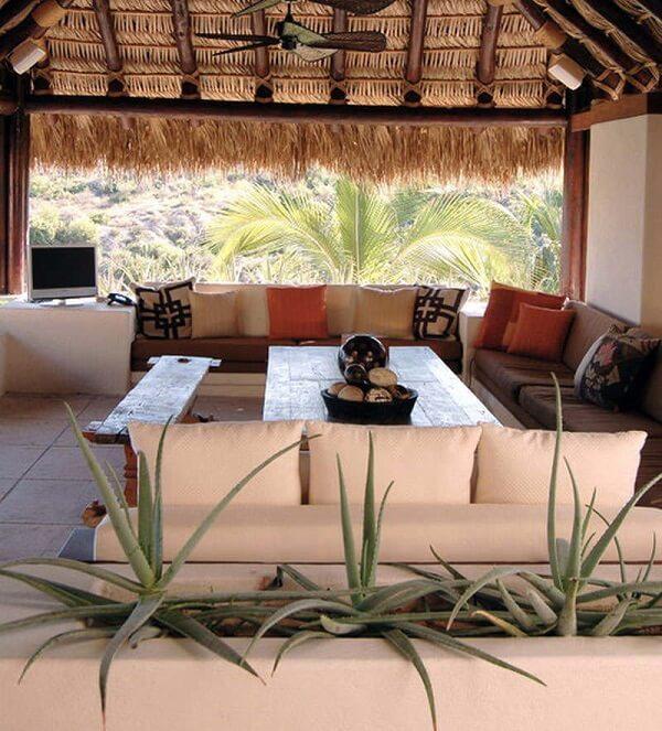 Aprenda como plantar muda de babosa em jardineiras e decore o terraço