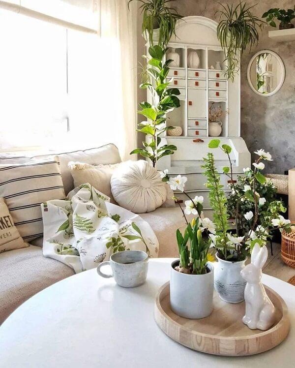 Combine com outras plantas do espaço
