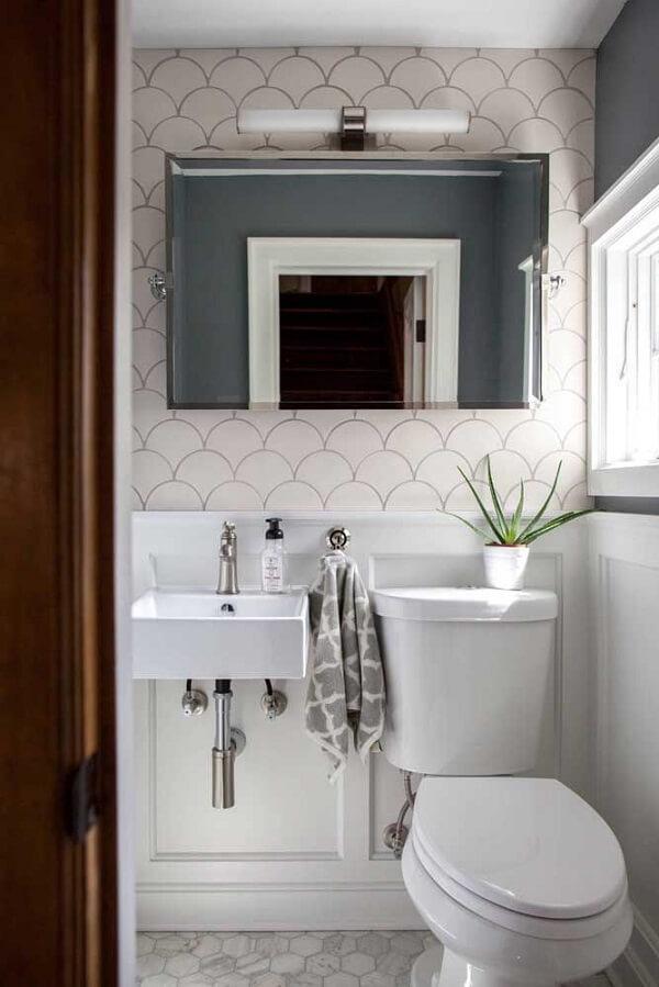 Como cuidar de planta babosa dentro do banheiro