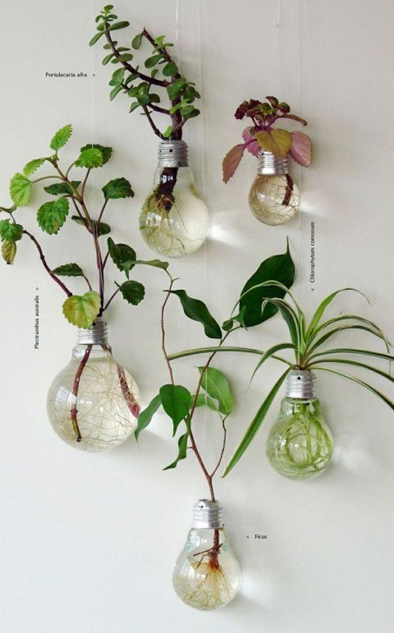 Artesanatos fáceis para usar como vaso de plantas moderno