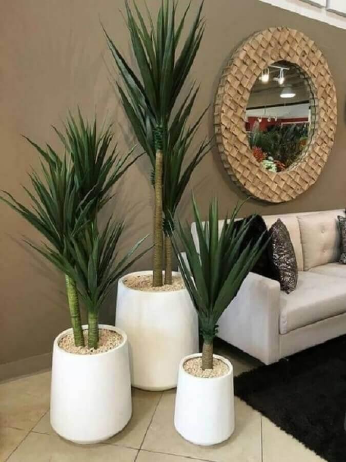 casas decoradas com plantas grandes Foto Pinterest