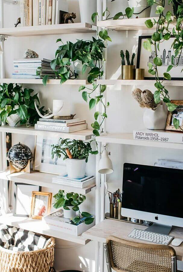 decoração com plantas para estante com prateleiras Foto Futurist Architecture