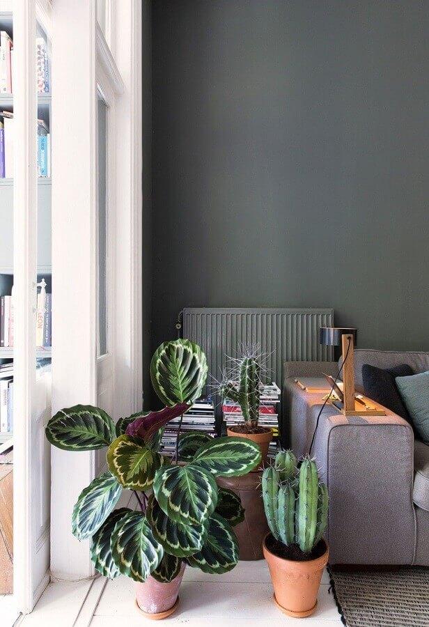 decoração com plantas para sala cinza moderna Foto Follow The Colours
