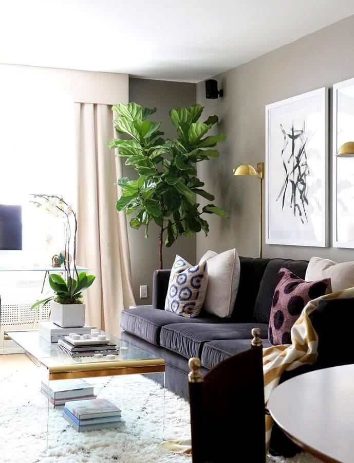 decoração com plantas para sala de estar moderna com sofá preto e mesa de centro de acrílico Foto Lolahome