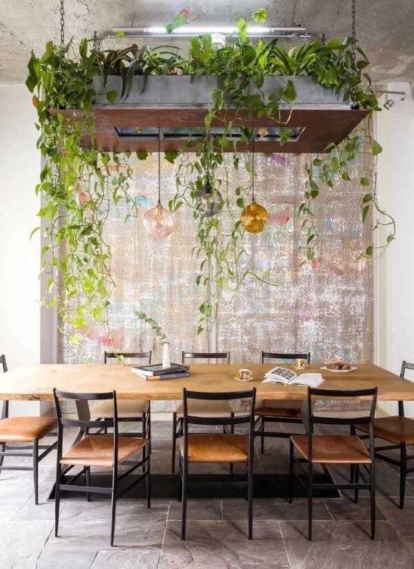 Mesa de jantar com vasos de planta jiboia suspensos