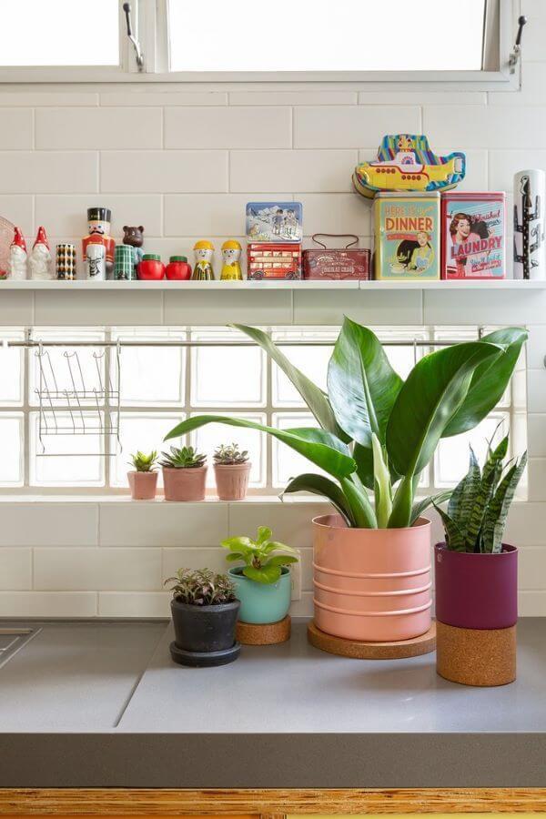 Aprenda como cuidar de pacová para decorar sua casa, como a cozinha