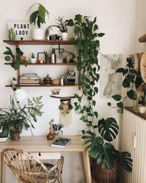 Escrivaninha com plantas e variadas decorando o espaço
