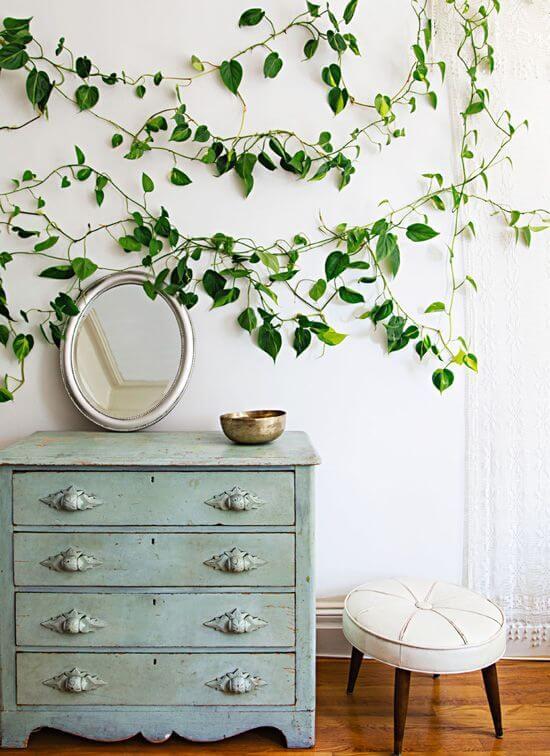 Comoda retro com planta jiboia decorando a parede