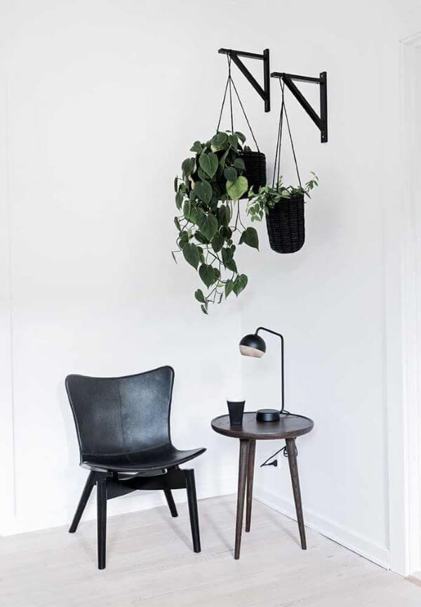Decoração com suportes de vasos de planta jiboia pendente