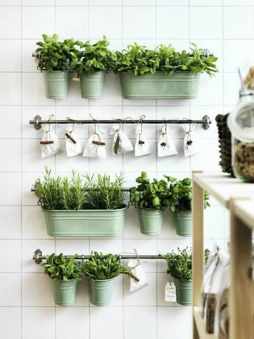 Horta na cozinha de casa com vaso de parede