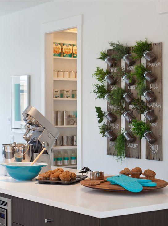 Vaso de parede com horta na cozinha