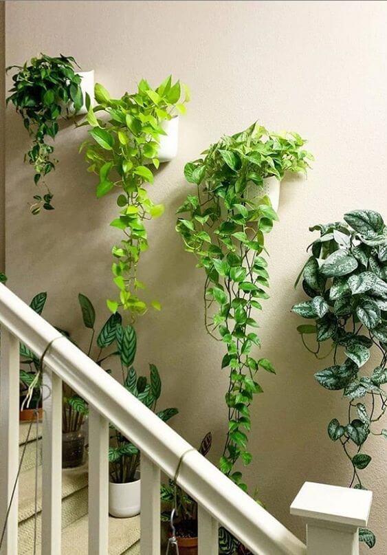 Vaso de parede moderno
