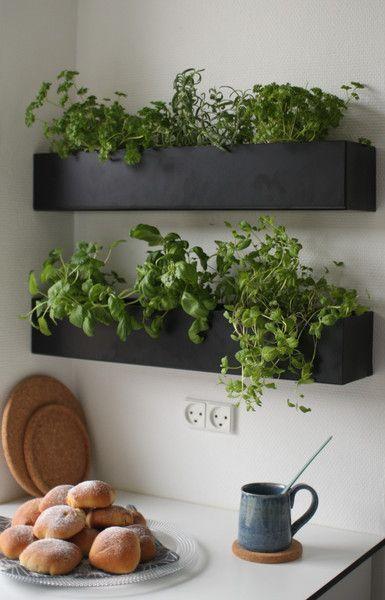 Aposte no vaso de parede para montar uma mini horta na cozinha