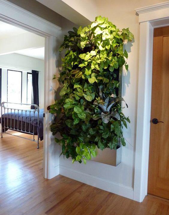 Vaso de parede para jardim vertical