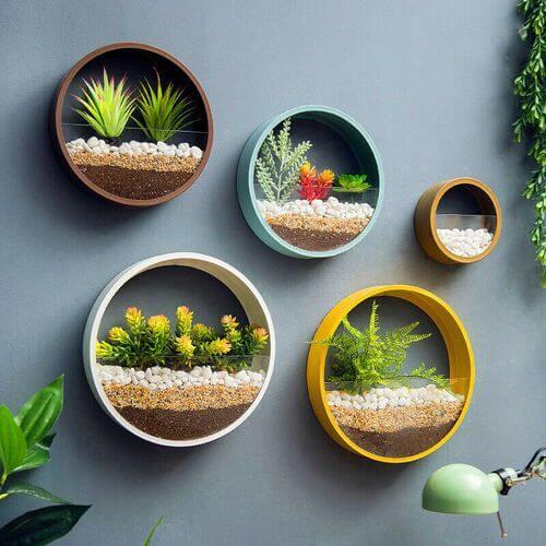 Vaso de parede redondo com plantas variadas