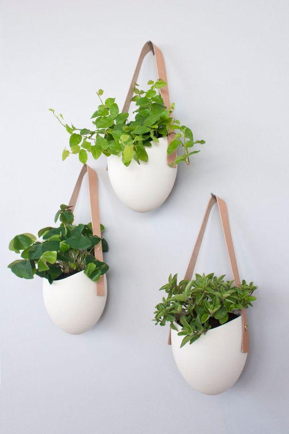 Vaso de parede suspenso com plantas variadas