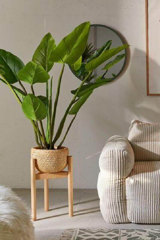 vasos com plantas para decoração de sala de estar Foto Urban Outfitters