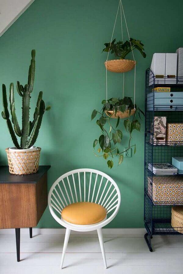 vasos de plantas e rack de madeira para sala verde Foto Colomb Design