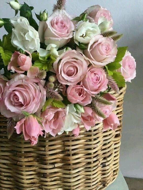 cesta com rosas cor-de-rosa, super romântico