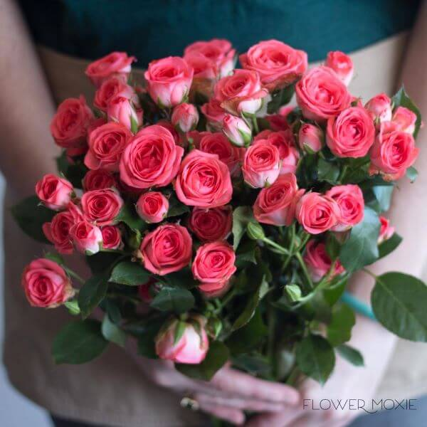 Presenteie alguém especial com a rosa flor
