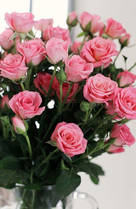 Decore sua casa com lindos arranjos da flor rosa