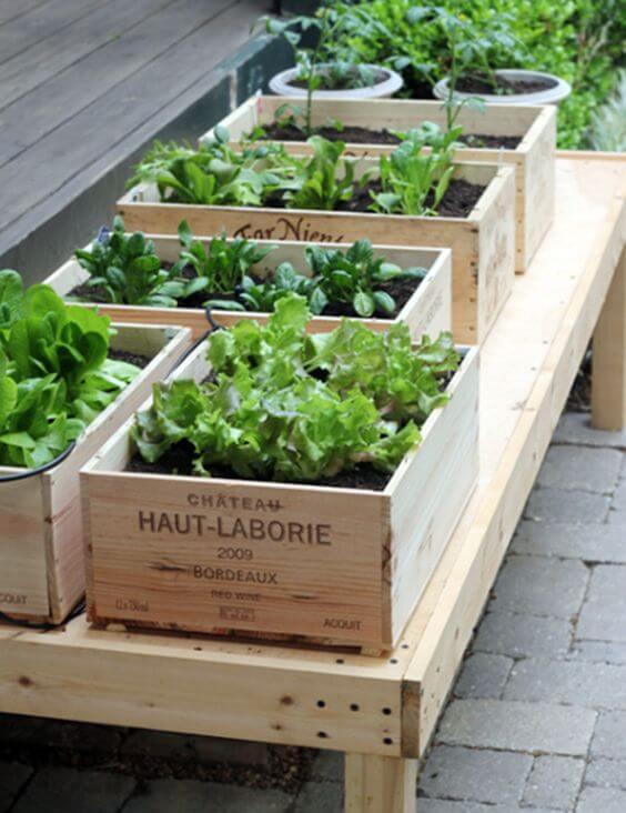 Use caixas bonitas para ter uma horta no quintal