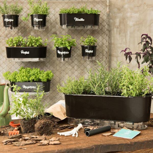 Vaso autoirrigável para horta no quintal