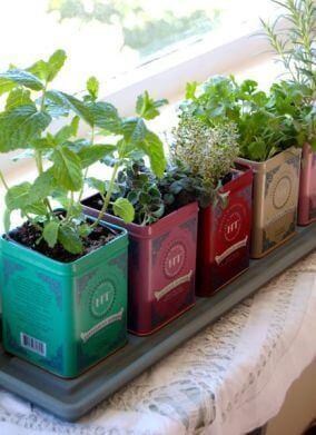 Hortas criativas para quintal