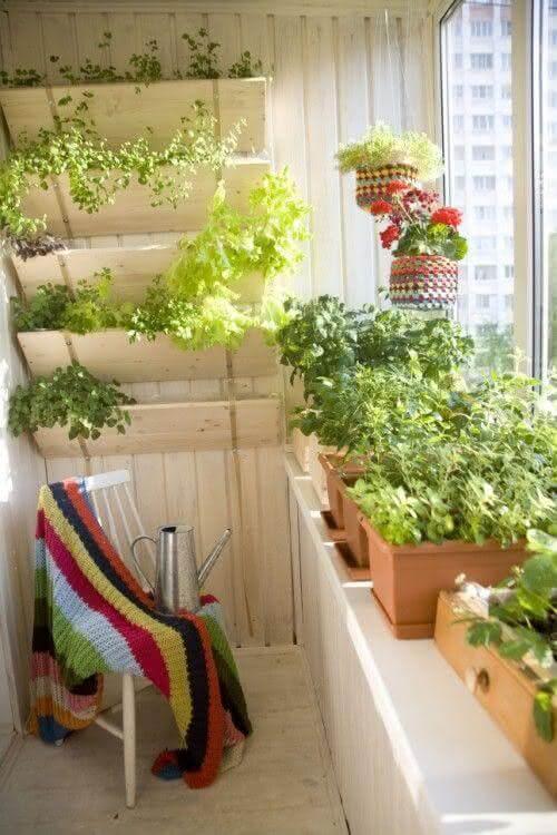 Horta no quintal iluminado de casa moderna