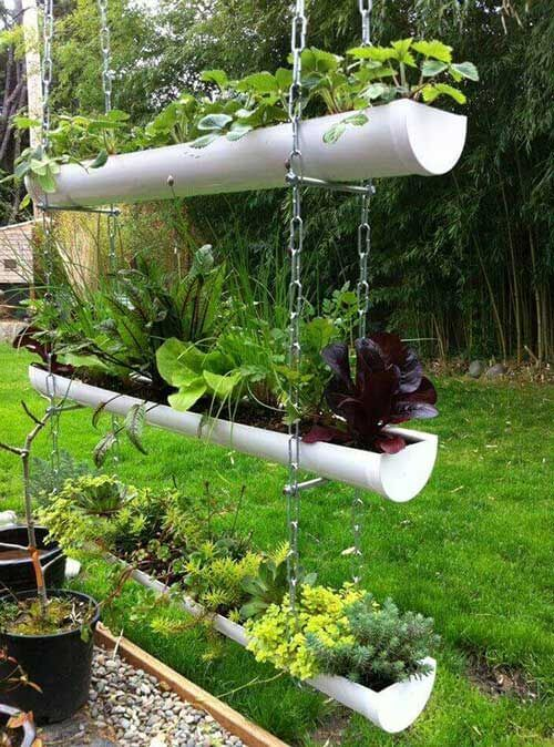A horta suspensa para ambientes pequenos