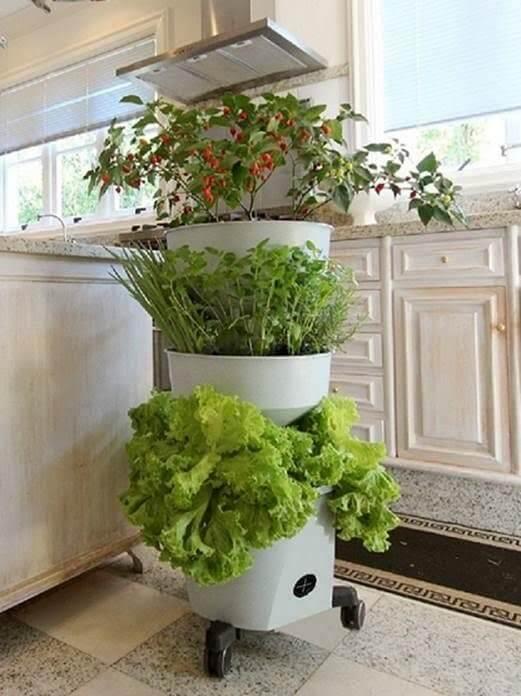 Horta vertical com vaso autoirrigável grande
