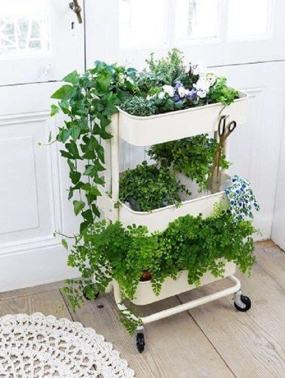 Monte uma horta no quintal de acordo com o seu espaço