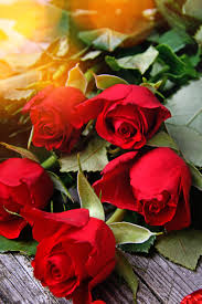 Use a rosa vermelha para decorar sua casa com muito romance