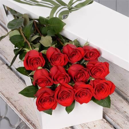 Presenteie alguém especial com as rosas vermelhas