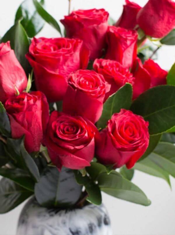 Rosas vermelhas para buquê