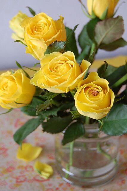 Vaso de rosa amarela