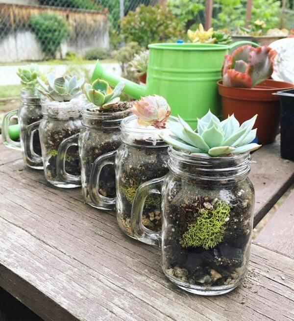 Aproveite as canecas para criar o terrário de suculentas em vidro