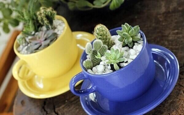 Como fazer terrário de suculentas em xícaras de porcelana coloridas