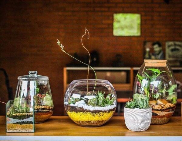 O terrário de suculentas complementam a decoração do ambiente