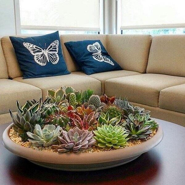 O terrário de suculentas decora a mesa de centro da sala de estar