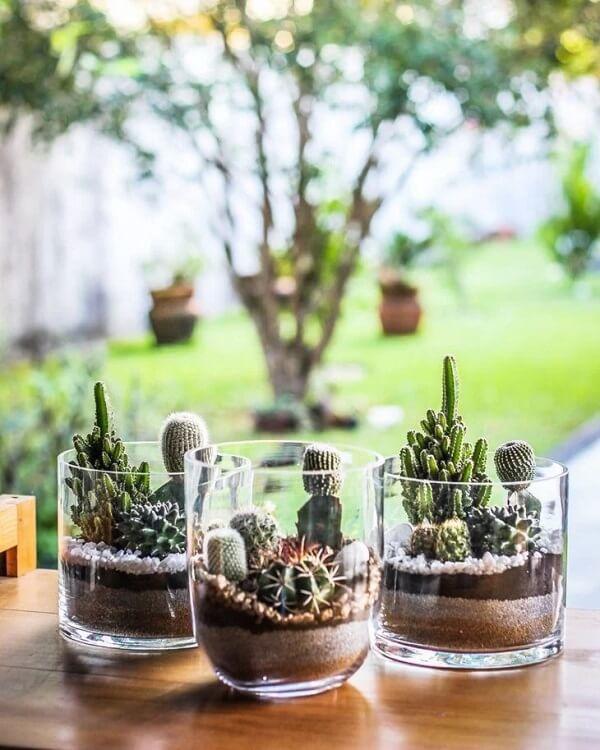 Os recipientes de vidro são ótimos para montar o mini terrário de suculentas