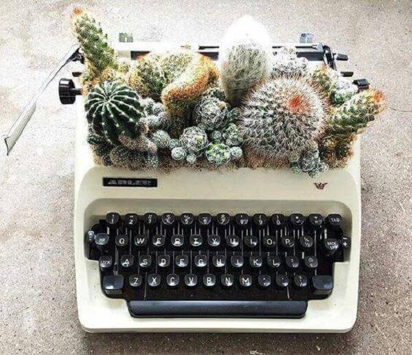 Que tal montar um lindo terrário de suculentas e cactos em antiga máquina de escrever?