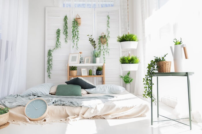 Se você deseja trazer a natureza para dentro de casa aposte em vasos de plantas na hora de decorar um apartamento pequeno
