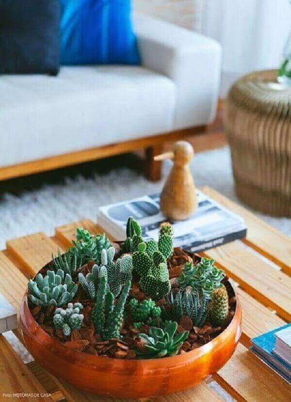 Terrário de suculentas decora a sala de estar