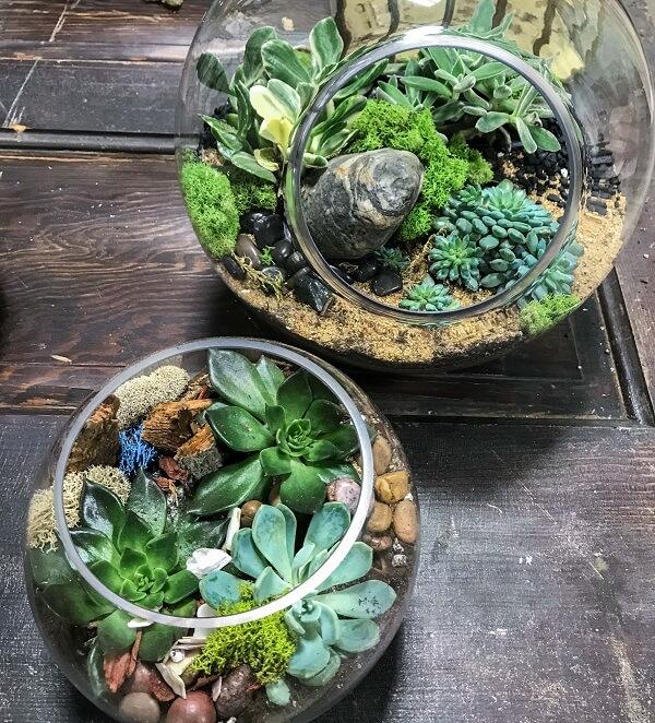 Traga a natureza para dentro de casa com o terrário de suculentas